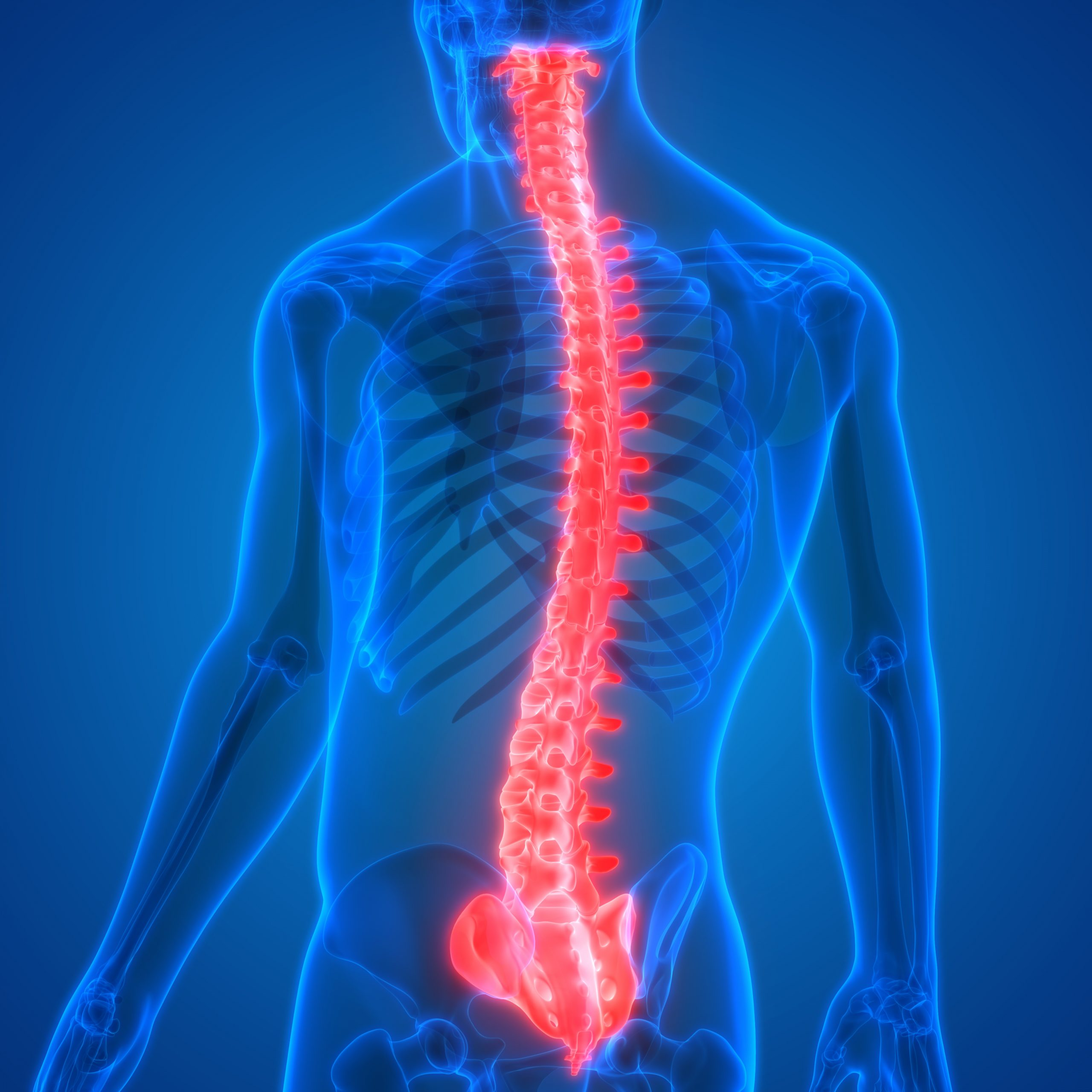 Understanding the Types of Back Pain and Their Causes and Risks
